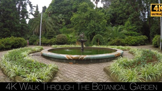 Thumbnail for Walk Through The Botanical Garden 5