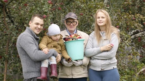 Thumbnail for Family Out Collecting Apples In The Orchard