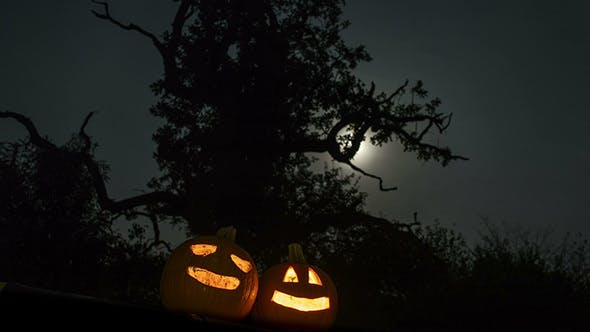Thumbnail for Scary Halloween Pumpkins in the Forest
