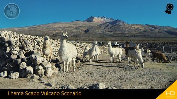 Thumbnail for Lhama Scape Vulcano Scenario
