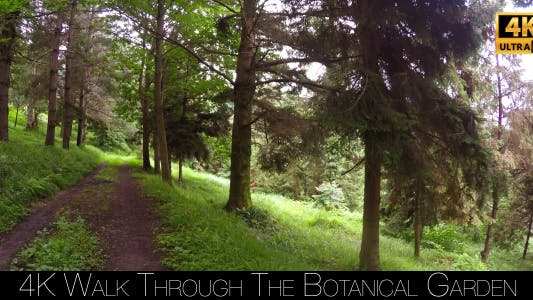 Thumbnail for Walk Through The Botanical Garden 16