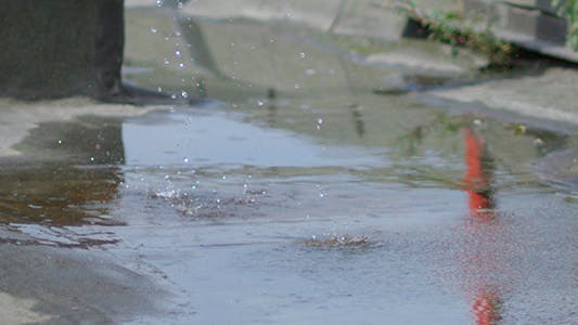 Water Dripping Into a Puddle