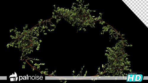Bush Vegetation Frame