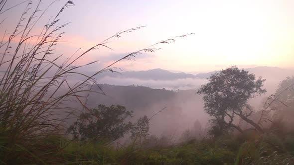 Thumbnail for View Of Foggy Sunrise On The Little Adam's Peak In Ella, Sri Lanka 24