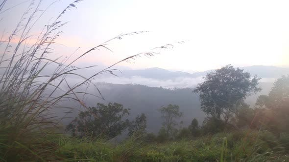 Thumbnail for View Of Foggy Sunrise On The Little Adam's Peak In Ella, Sri Lanka 29