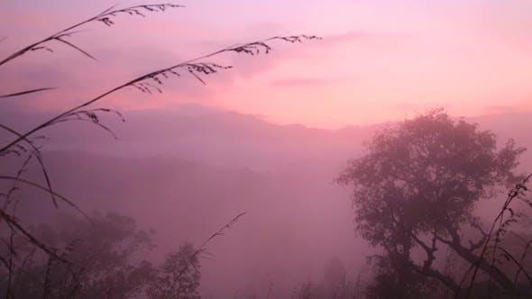 Thumbnail for View Of Foggy Sunrise On The Little Adam's Peak In Ella, Sri Lanka 6