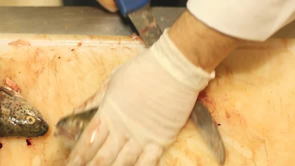 Thumbnail for Cutting Fish