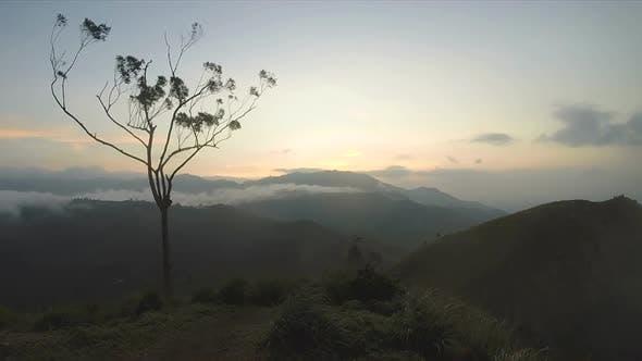 Thumbnail for Magical Sun Rising At Ella Peak, Sri Lanka. 2
