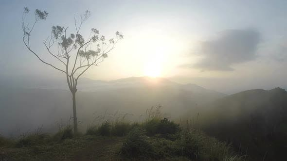 Thumbnail for Magical Sun Rising At Ella Peak, Sri Lanka. 4