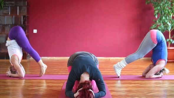 Thumbnail for Women Doing Yoga Class In Hall 20