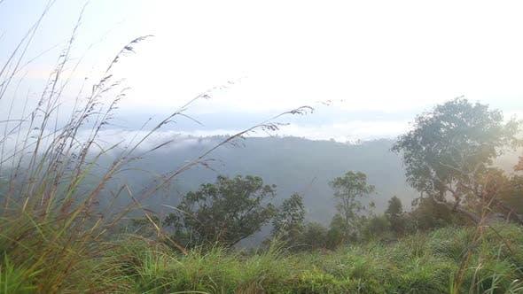 Thumbnail for Timelapse Of Foggy Sunrise On The Little Adam's Peak In Ella, Sri Lanka 10