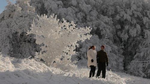 Wunderbarer Winter