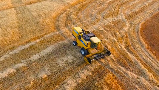 Cover Image for Aerial Harvesting