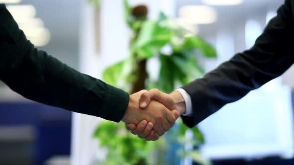 Thumbnail for Business Greeting Handshake