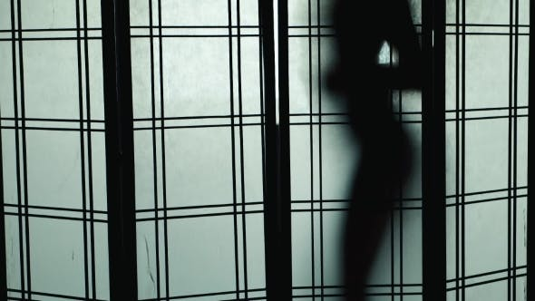 Silhouette Of a Woman Who Dances For Translucent