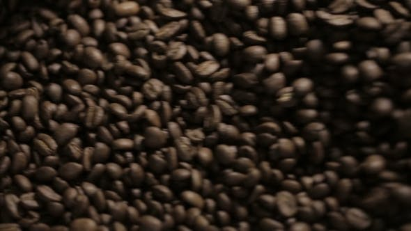 Thumbnail for Endless Mixing Roasted Coffee Beans