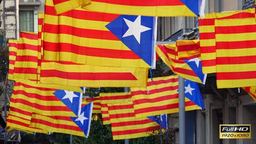 Freedom for Catalonia Independence Flagstaff
