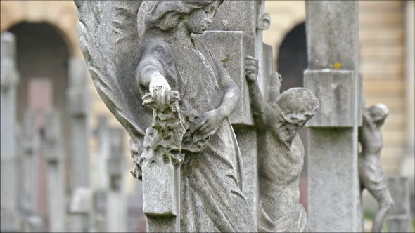 Thumbnail for The Statues Found Inside the Cemetery