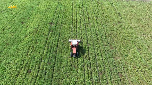 Thumbnail for Aerial (2 Clips) Green Field and Tractor 2
