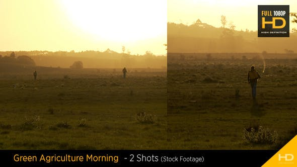 Thumbnail for Green Agriculture Morning