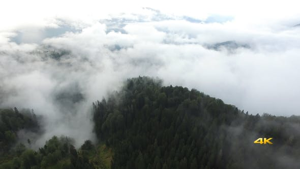 Thumbnail for Aerial Flying Above the Clouds And Forest