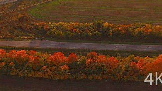Automobile Road and Beautiful Nature