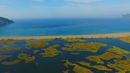 Thumbnail for Beach Aerial View