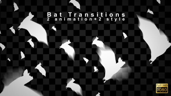 Bat Transitions