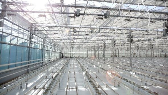 Thumbnail for Panorama Of a Large Greenhouse, Potted Plants