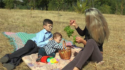 Mother With Kids on a Picnic