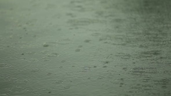 Thumbnail for Water Surface With Raindrops