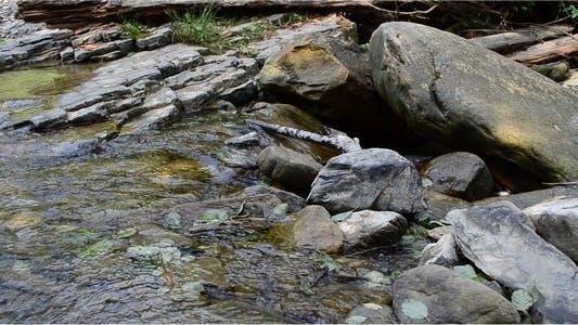 Thumbnail for River 9