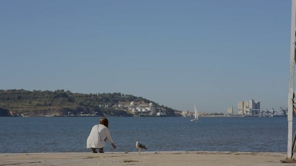 Thumbnail for Girl  Playing With Sea Gull And Looking At The