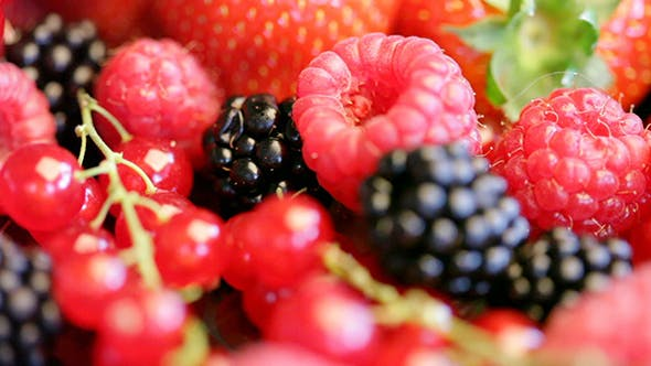 Thumbnail for Strawberry, Currant, Blackberry