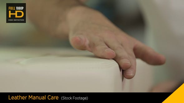 Thumbnail for Attention to Details Leather Manual Care
