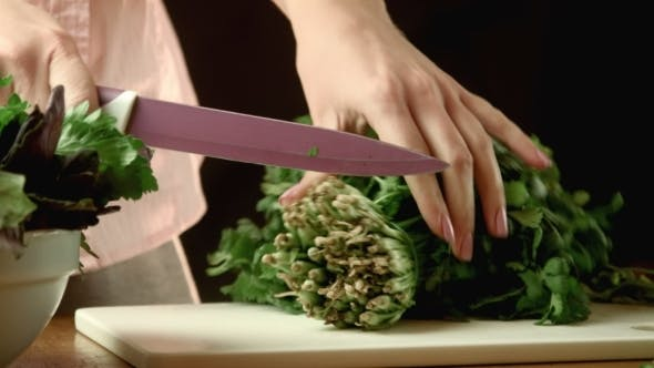 Thumbnail for Cutting Of Cilantro