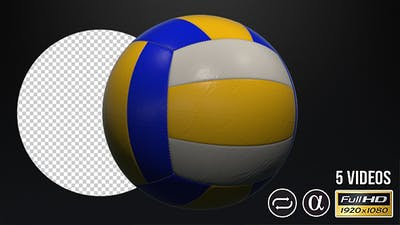 Volleyball Ball - 5 Pack
