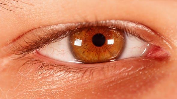 Thumbnail for Human Eye