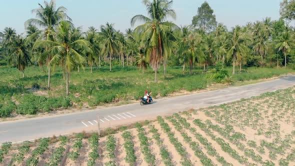 Thumbnail for Girl Rides Along Asphalt Road Among Green Palm Forest