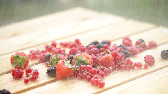 Cover Image for Fresh Berry In The Rain