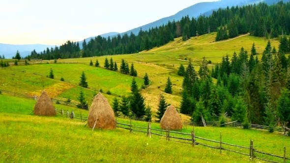 Thumbnail for Beautiful Alpine Meadows