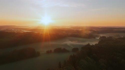 Aerial Time Lapse Hyperlapse Magic Misty Morning in Forest