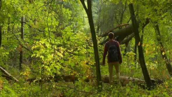 Thumbnail for Man With Backpack Comes to The Old Forest