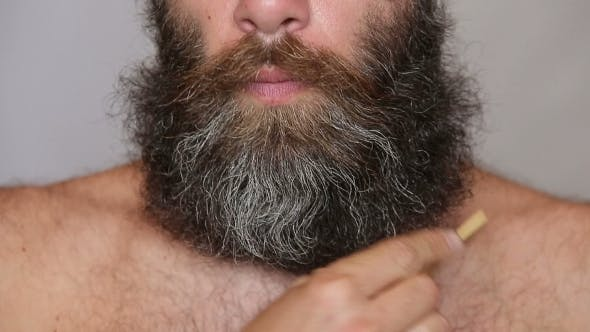 Thumbnail for Lush Beard And Mustache