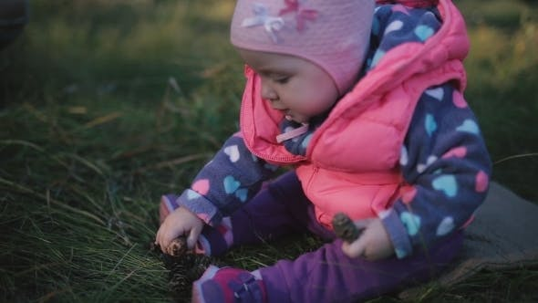 Thumbnail for A Child Sits On a Rug On The Meadow And Playing