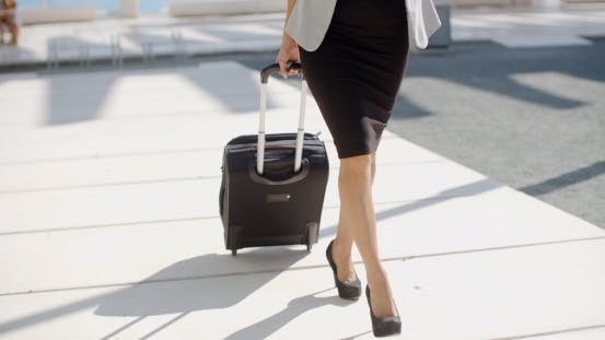 Cover Image for Woman Going On a Business Trip