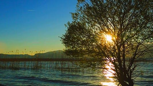 Thumbnail for Sea and Lake (Sunset)