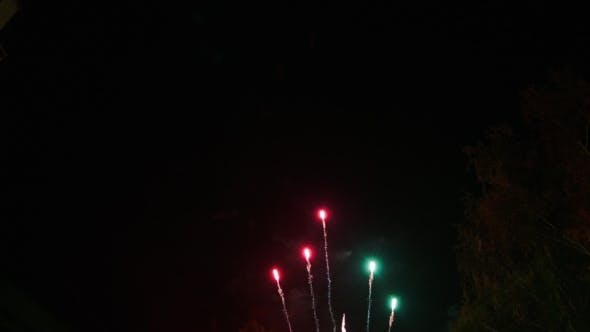 Thumbnail for Celebratory Fireworks In The Night Sky