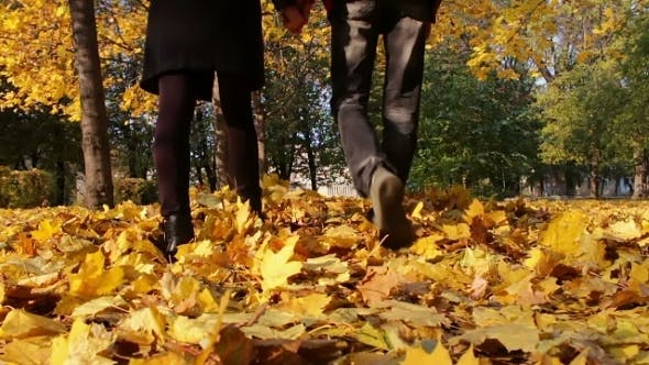 Thumbnail for Young Man And Girl Walking In The Autumn Park