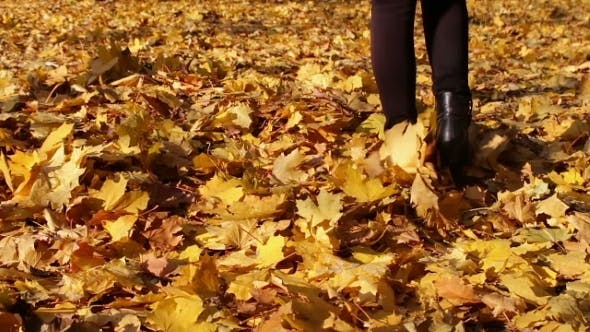 Thumbnail for Happy Girl Talking On a Carpet Of Yellow Leaves